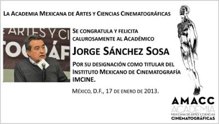 academiamexicanadecine.org