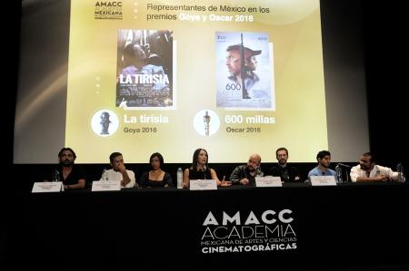 Anuncio Goya-Ariel-2016