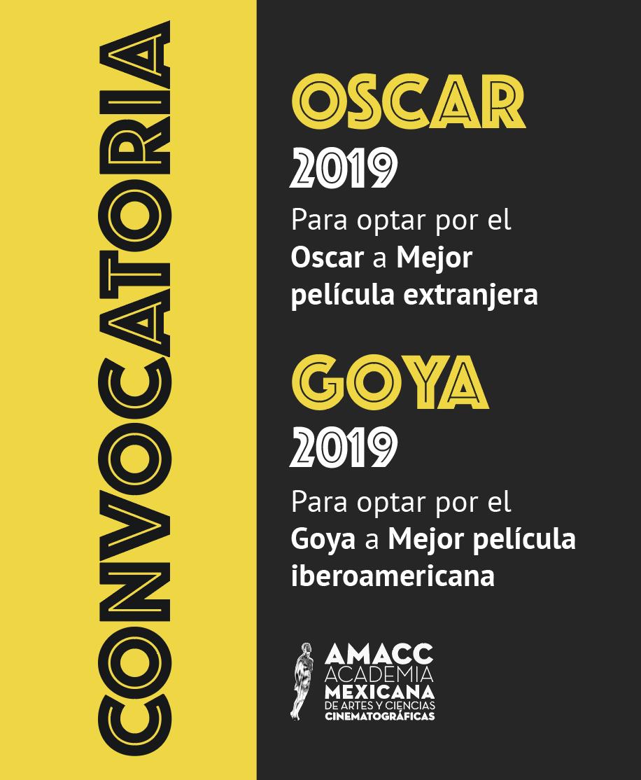 Abierta La Convocatoria De La Amacc Para Inscribir Películas Al Goya